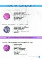 Human Histology PDF