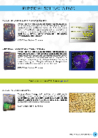 Physics and Chemistry DVD PDF